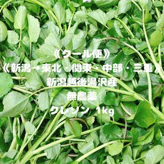 《クール便》《新潟→東北・関東・中部・三重》《無農薬》クレソン1kg(野菜)