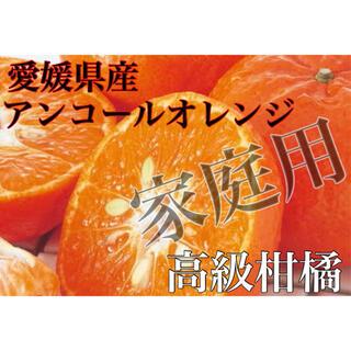1度食べたらやめられない♩濃甘高級柑橘家庭用【アンコールオレンジ】3L 5kg(フルーツ)