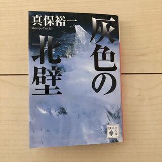 灰色の北壁(文学/小説)