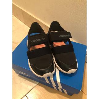 アディダス(adidas)の美品!adidas ドームサンダル 13.0センチ(サンダル)