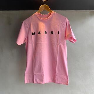 Marni - 新品未使用★MARNI マルニ ロゴ Tシャツ