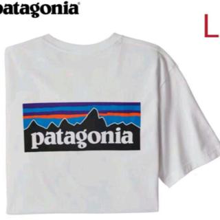 patagonia - 人気王 Lサイズ Patagonia パタゴニアの半袖Tシャツです