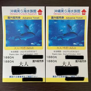 美ら海水族館チケット(水族館)