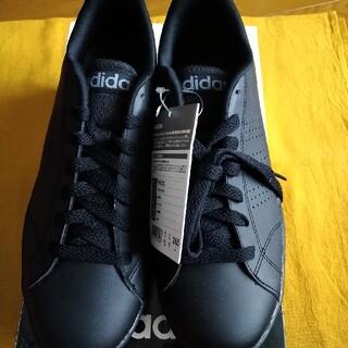 adidas - adidas メンズスニーカー