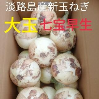 大玉※秀品3Lサイズ10Kg※淡路島新玉ねぎ たまねぎ 玉葱(野菜)
