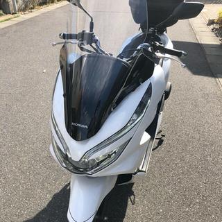 ホンダ - PCX  125 JF81 美品 ホンダ HONDA