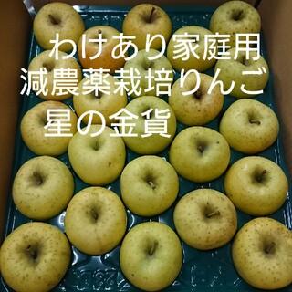 【くらま様専用】星の金貨(わけあり家庭用)10kg(フルーツ)