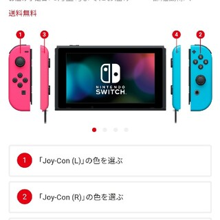 Nintendo Switch - Nintendo Switch custom 本体