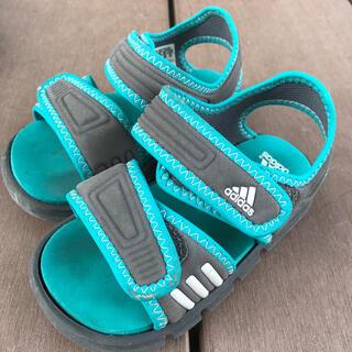 adidas - adidasサンダル13.0センチ