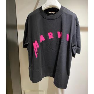 Marni - ✨新作✨新品  マルニ Tシャツ