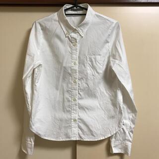 アルカリ(alcali)の☆alcali☆ムジボタンダウンシャツ(シャツ/ブラウス(長袖/七分))