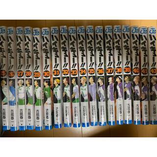 集英社 - ハイキュー  25~43巻   (42巻はありません。)