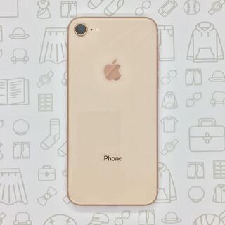 アイフォーン(iPhone)の【B】iPhone 8/64GB/356732080058538(スマートフォン本体)