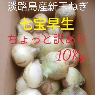 ★訳あり10Kg★淡路島新玉ねぎ たまねぎ 玉葱(野菜)