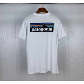 patagonia - 【新品】Patagonia Tシャツ Mサイズ ホワイト