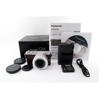 パナソニック(Panasonic)の★レンズセット★パナソニック LUMIX DMC-GM1S(ミラーレス一眼)