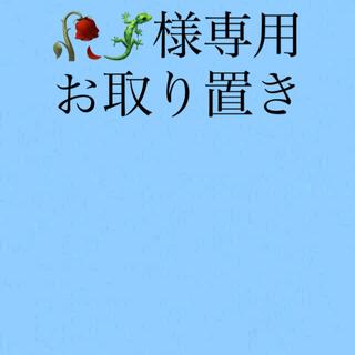 🥀🦎様専用 お取り置き5月15日まで(菓子/デザート)