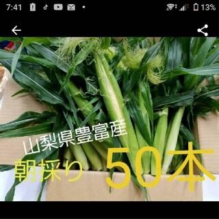 🌽🌽朝採りヤングコーン🌽🌽(野菜)
