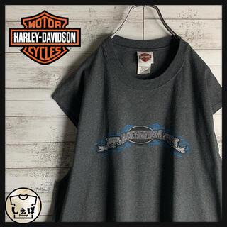 ハーレーダビッドソン(Harley Davidson)の【ビッグサイズ】ハーレーダビッドソン☆両面プリントタンクトップ 入手困難 美品(タンクトップ)
