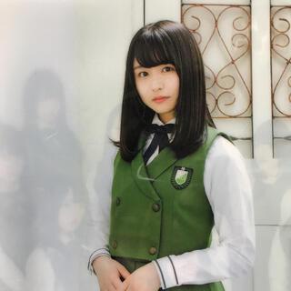 欅坂46(けやき坂46) - けやき坂 長濱ねる クリアファイル