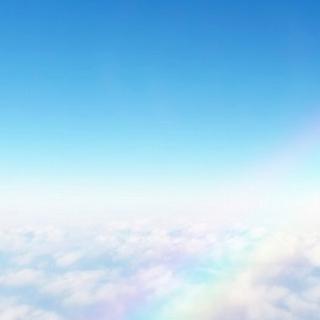 M'S GRACY - 美品 エムズグレイシー  ワンピース 40 花柄 青