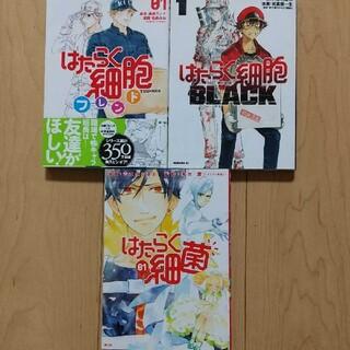 コウダンシャ(講談社)のはたらく細胞 3冊セット(青年漫画)