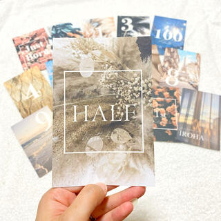 マンスリーカード 月齢カード マイルストーンカード(アルバム)