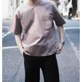 AURALEE 19SS STAND-UP TEE (PURPLE BROWN)(Tシャツ/カットソー(半袖/袖なし))
