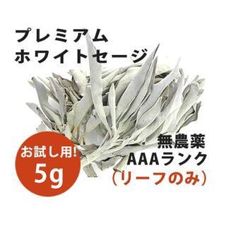 【無農薬】ホワイトセージ  高品質5g 解説マニュアル&チャック付きポリ袋(お香/香炉)