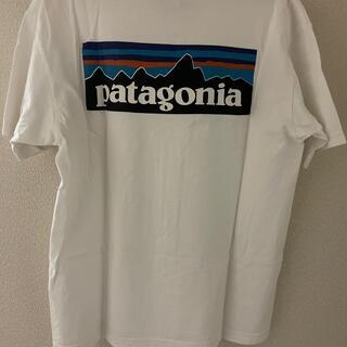 patagonia - パタゴニア tシャツ M