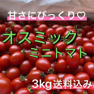 超濃度!!ミニトマト フルーツトマト!? ★送料込み★