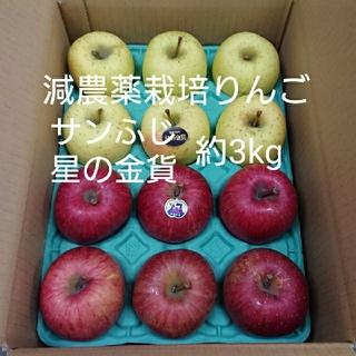 減農薬栽培りんご サンふじ・星の金貨約12個(3kg)(フルーツ)