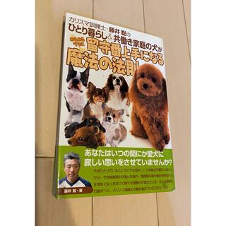 カリスマ訓練士・藤井聡のひとり暮らし&共働き家庭の犬がみるみるうちに留守番上手に(住まい/暮らし/子育て)