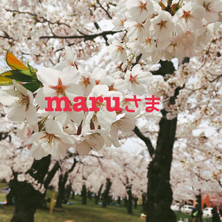 maru様専用ページ 三角巾(その他)