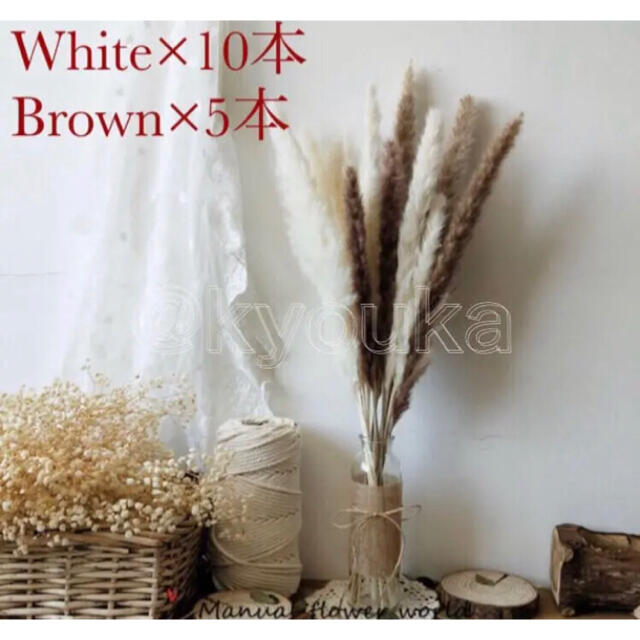 白 6 茶 2 モカ 2 ハンドメイドのフラワー/ガーデン(ドライフラワー)の商品写真