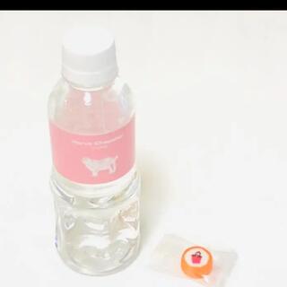 エルベシャプリエ(Herve Chapelier)の[非売品、ノベルティ] エルベシャプリエ ペットボトルと飴(置物)