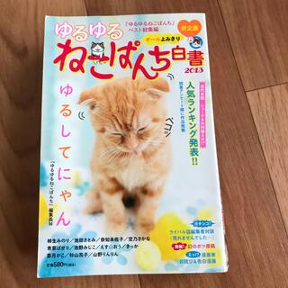 ゆるゆる ねこぱんち白書 2013  (その他)