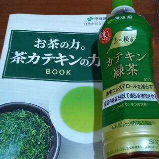 限定 伊藤園 カテキン緑茶 500ml×24本 おまけ付トクホ 特定 お茶(茶)