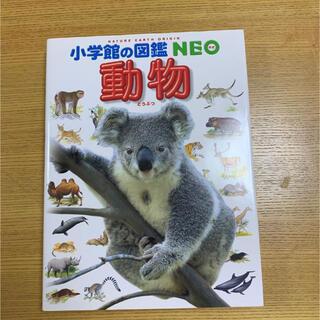小学館 - 動物 小学館の図鑑NEO
