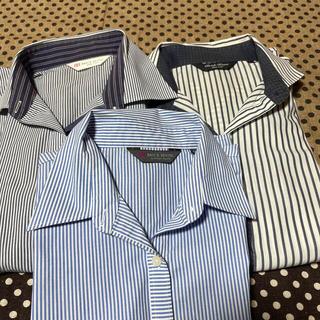 アオヤマ(青山)のシャツ工房 Yシャツ セット売り(シャツ/ブラウス(長袖/七分))