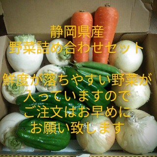 静岡県産野菜詰め合わせセット