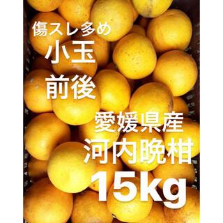 愛媛県 小玉 宇和ゴールド 河内晩柑 15kg(フルーツ)