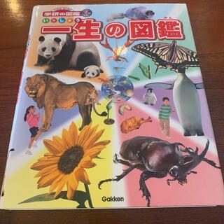 一生の図鑑(絵本/児童書)