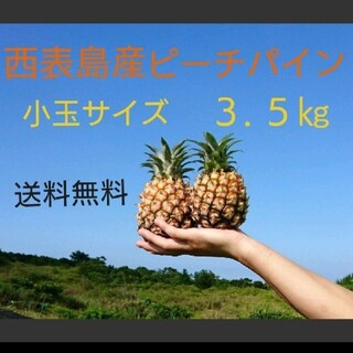 限定セール中!!西表島産ピーチパイン小玉サイズ 約3.5㎏(6~9玉)(フルーツ)