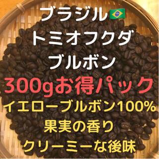 自家焙煎 ブラジル トミオフクダ ドライオンツリー300g(豆又は粉)(コーヒー)