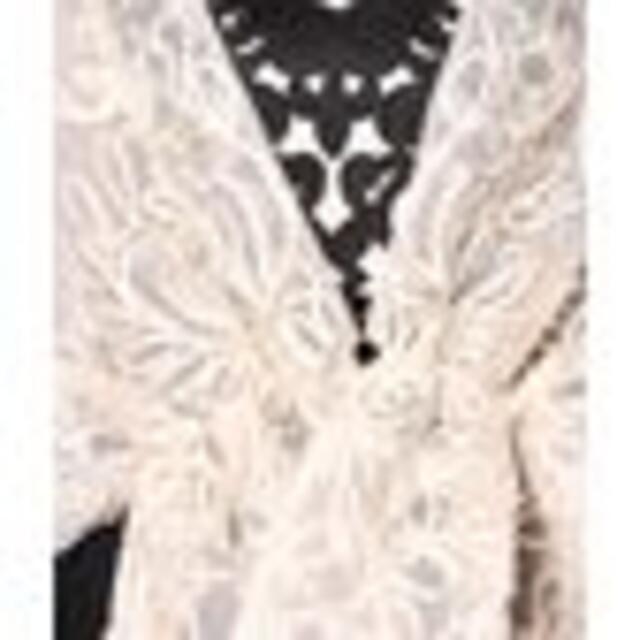 GRACE CONTINENTAL(グレースコンチネンタル)のグレースコンチネンタル コード刺繡 オーガンジー ストール 短時間着・美品 レディースのファッション小物(マフラー/ショール)の商品写真