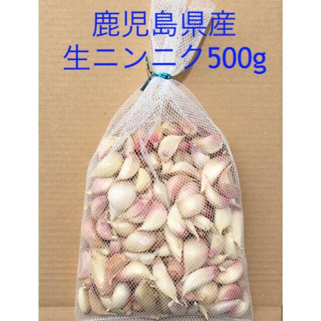 鹿児島県産 生ニンニク500g 食品/飲料/酒の食品(野菜)の商品写真