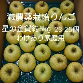 【あゆみこ様専用】減農薬栽培りんご 星の金貨(わけあり家庭用)(フルーツ)