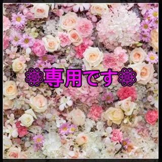 【新品未開封】ロージーローザ 天然海綿スポンジ シルク種 2P × 3袋セット(パフ・スポンジ)