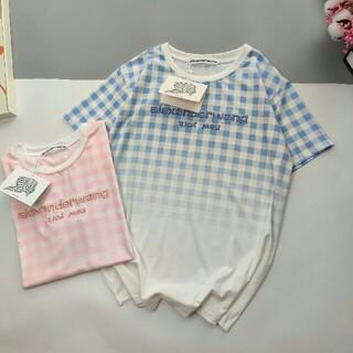 アレキサンダーワン(Alexander Wang)の◉お勧め◉アレキサンダーワン tシャツ ブルー(Tシャツ(半袖/袖なし))